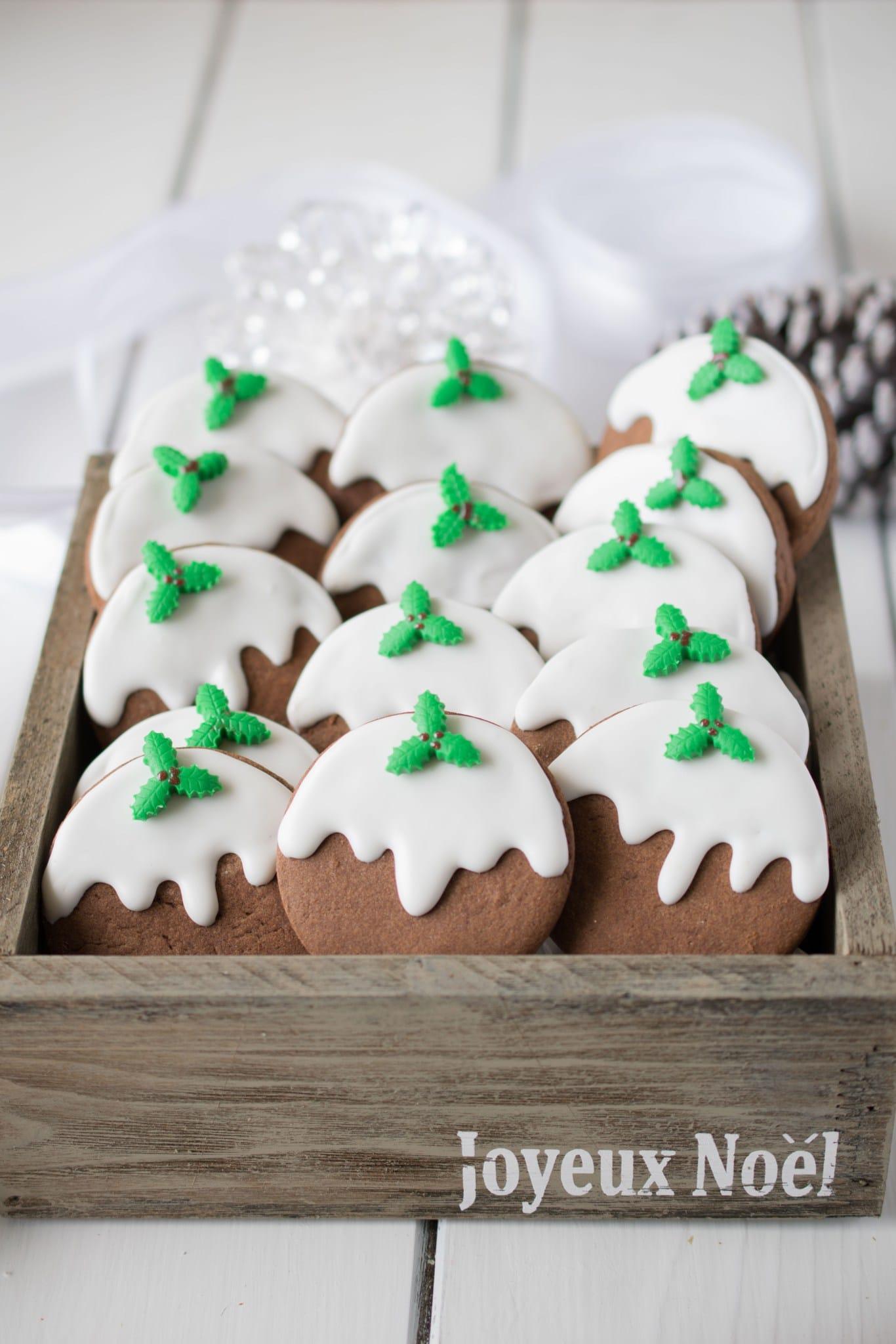 Christmas-pudding-cookies-201